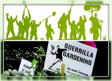 Zelena gerila uljepšava gradove