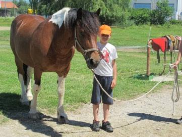 Udruga Don Kihot terapijskim jahanjem pomaže djeci