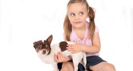 Kada djetetu nabaviti ljubimca?