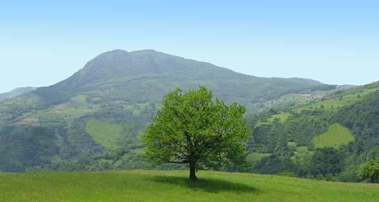 Zagreb potpisuje zelenu deklaraciju