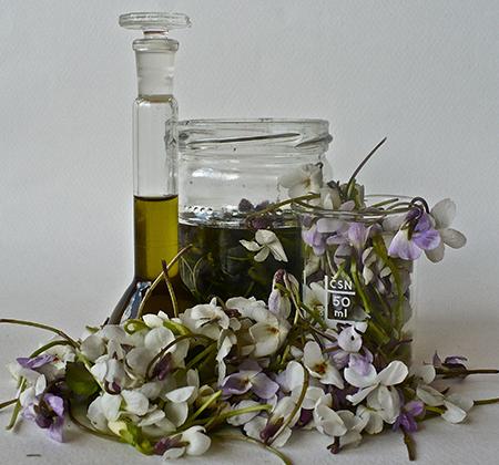 Mirisne tinkture u kućnoj parfimeristici