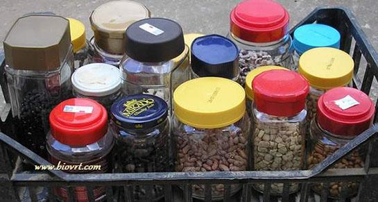 Sve što treba znati o kupovini sjemenja
