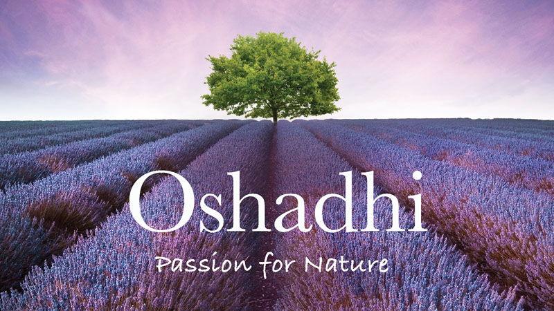 Oshadhi eterična i biljna ulja - idealan božićni poklon
