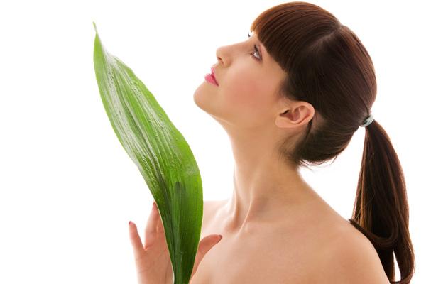 Gljivične infekcije se povlače pred fitoterapijom i aromaterapijom