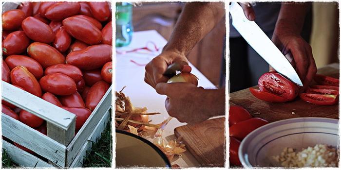 Šalša od pomidora – puno više od umaka od rajčica