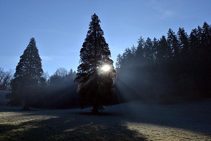 Rimske terme u zagrljaju zime