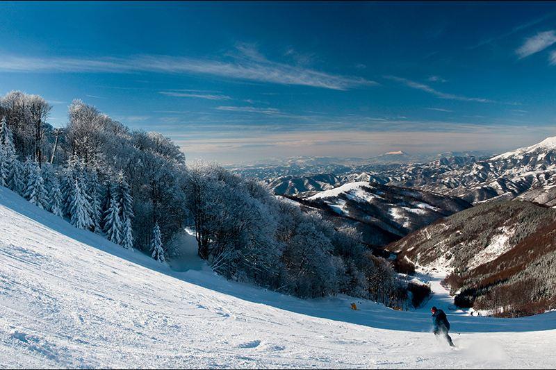 Gdje na zimovanje? Ljepote Kopaonika, Zlatibora i Stare planine oborit će vas s nogu