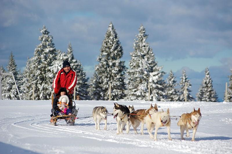 Zašto trebate doći na Roglu, čak i ako niste ljubitelj skijanja