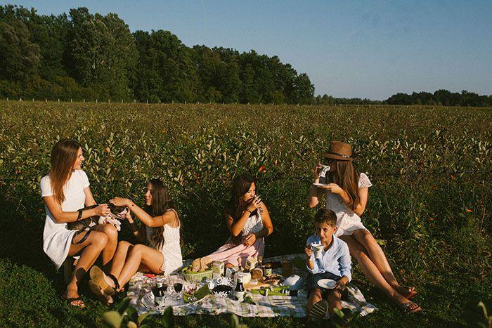 AroniaLive: 100% biološki uzgoj uz 100% ljubavi, pažnje i požrtvovnosti prema svakoj bobici aronije