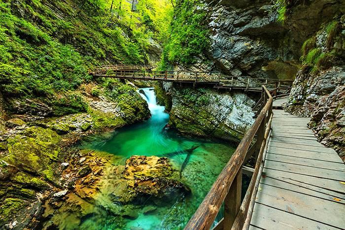 Jednodnevni izlet na Bled, Bohinj i kanjon Vintgar - totalni odmor za tijelo i dušu