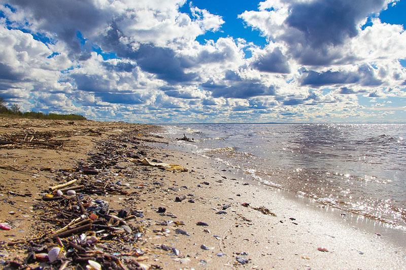 UN upozorava: Plastika se nalazi svuda oko nas - možda i u vama