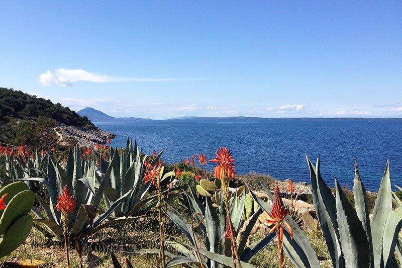 Festival aromaterapije: Miomirisna priča otoka Lošinja