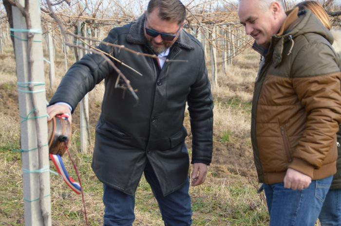 Ljubitelji vina u Feričancima proslavili sv. Vinka