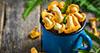 Vrganji, sunčanice, lisičarke: Neodoljivi jesenski recepti s