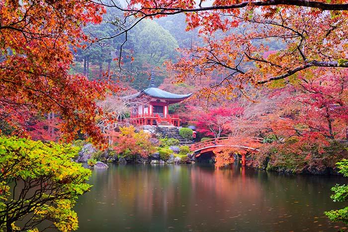 Jesensko lišće pod nogama, miris zemlje u nosnicama