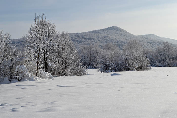 Fenomen Plitvice: pronašli smo najromantičnije mjesto za proslaviti Valentinovo