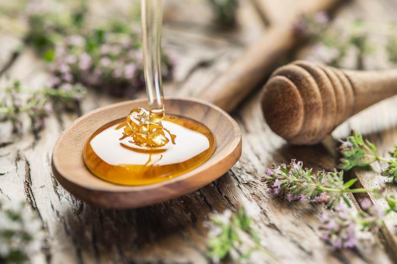 Sva lica meda: Dar pčela za dar zdravlja