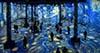 VIDEO: Zakoračite u svijet remek-djela Vincenta van
