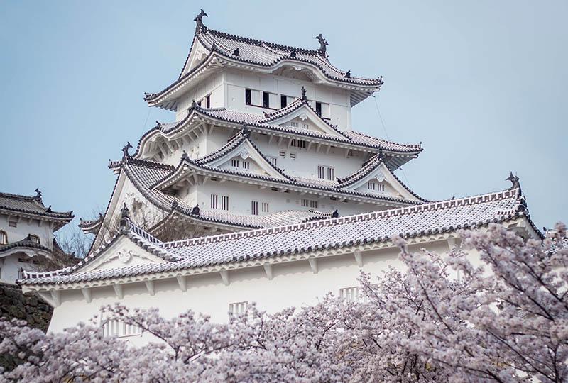 Dvorac Himeji – najposjećeniji japanski dvorac okružen trešnjama u cvatu