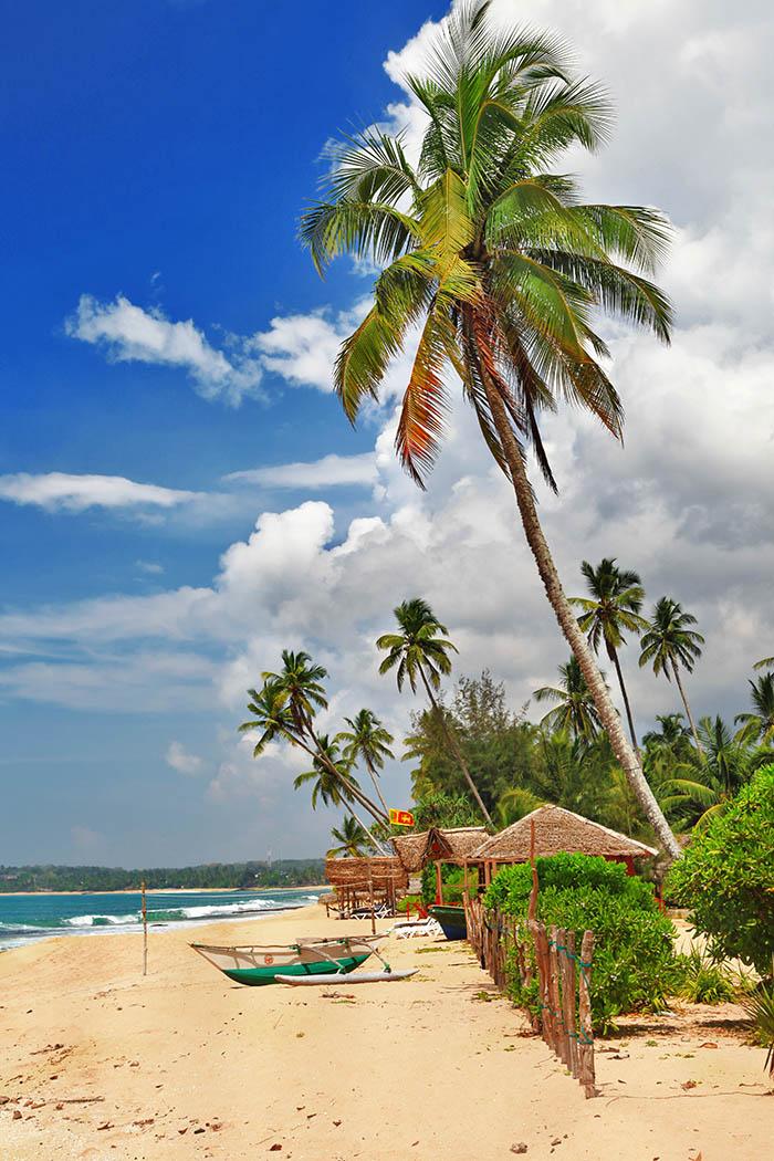 Šri Lanka: Biser Indijskog oceana