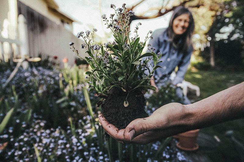 Ako nemate volje za teretanu, zaputite se u – vrt