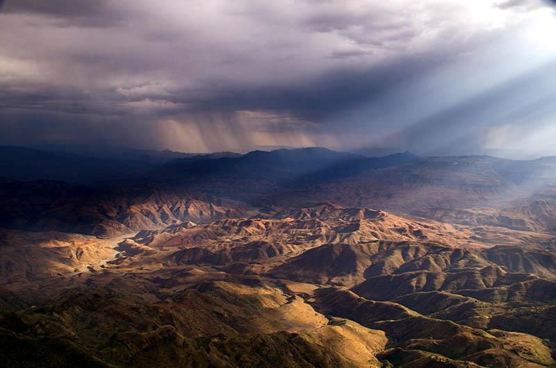 Etiopija je u jednom danu zasadila 350 milijuna stabala za spas Zemlje