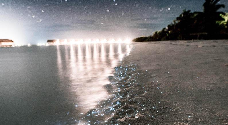 Čaroban prirodni fenomen: Jednu plažu na Maldivima