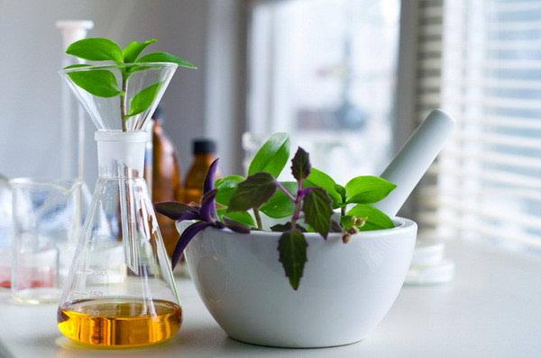 Osnove za izradu pripravaka zelene ljekarne