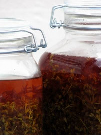 Receptura za macerat gospine trave - kantarion