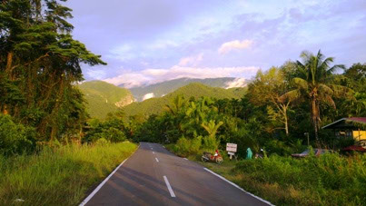 Moja prva džungla